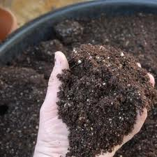 Potting Composts