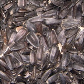 Black Sunflower Seed